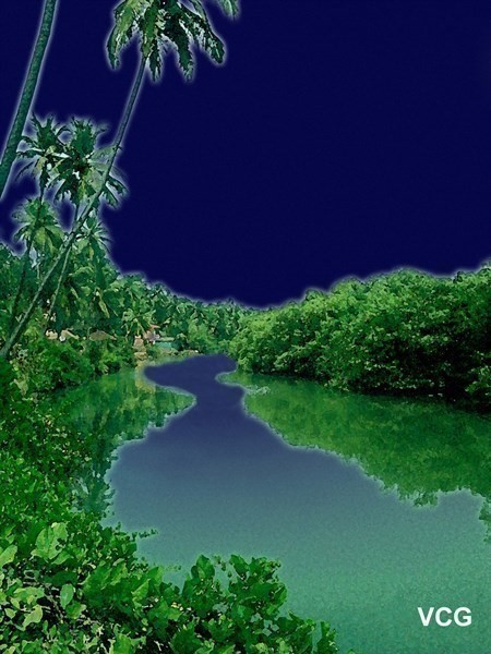 Tropical river by night